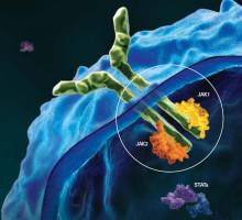 Jakavi visar effekt mot ännu en obotlig blodcancer