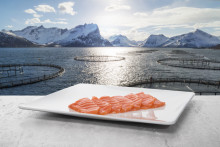 Norwegian seafood exports grew by 7 per cent in August