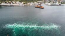 Boblegardin - utsikt til redusert støy ved undervannssprengning