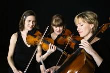 The Knife och Trio ZPR nominerade till Nordiska rådets musikpris