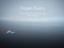 Frozen Poetry introduktion