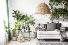 Høstens interiørnyheter fra Rusta: naturmaterialer og luksuriøs hotellfølelse