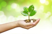 Future of Finance: Trends und Entwicklungen zum Thema Nachhaltigkeit in Unternehmen und Banken