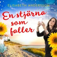 Läs kommande feelgood-roman från Elisabeth Andersson före alla andra!