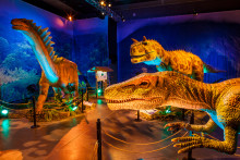 Nordic Exhibitions Events Ab Dinosaurs The Exhibition