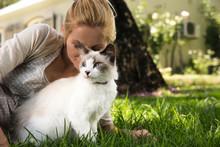 08. August ist internationaler Tag der Katze