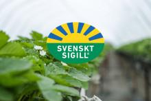 SydGrönt tar ansvar genom Certifiering IP Sigill Frukt och Grönt