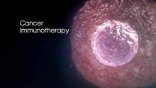 Förlängd överlevnad med Blincyto – leukemistudie avbryts i förtid