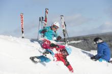 Nominerade till skidpriser 2016