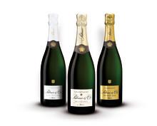 Champagnekapet Palmer & Co i elegant design inför nyåret