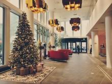 Ensam julgran söker julklappar - ett initiativ för att alla barn förtjänar en god jul