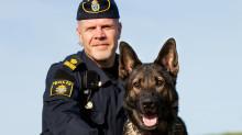 Aldo är Årets polishund 2013