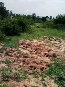 Burundi: Satellitbilder stödjer vittnesuppgifter om massgravar