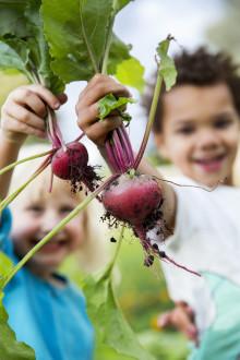 Odlingskurs på Rosendals Trädgård för små och stora visar vägen till hållbarhet.