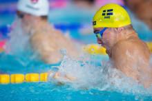 Här är trupperna till Universiaden, EJM och JVM i simning