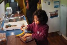 Ny undersøgelse: Danske skoleelever smider madpakken i skraldespanden