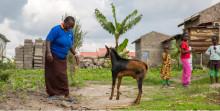 Pressinbjudan: Bekämpa fattigdom på ett effektivt sätt - Development Talks 16/11