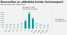 """Varannan utländsk turistkrona avhängd sommaren: """"Riskerar att bli en fullständig mardröm"""""""
