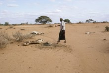 East Africa Drought: an update