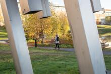 800 lärare till Umeå universitet på höstlovet