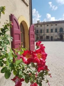 ITALIENS GULDKORN - Verona, Valpolicella och Gardasjön