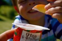 Fem gode yoghurtfristelser for de minste