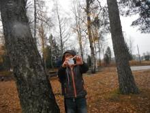 Elever från Skruvstads skola visar sina egna bilder från vardagen