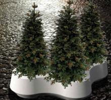 Verdens tungeste juletræsfod på Højbro Plads
