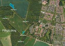 Nya våtmarker i Pålsjö skog