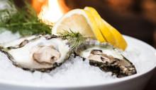 Ostron från Grebbestad – världens godaste!