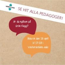 Hässleholms förskolor och skolor vill klättra på hållbarhetsstegen
