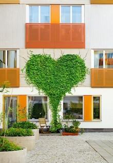 Vår hållbara kunskap ger frukt