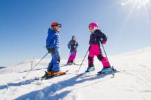 Fortsatt stor interesse for alpin skikjøring og økte inntekter fra eiendomsutvikling