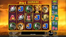 ​Hunt down some big wins with Hot Safari!