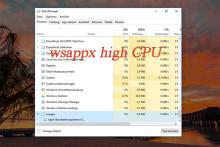 4 Lösungen für Wsappx High Disk oder High CPU | MiniTool