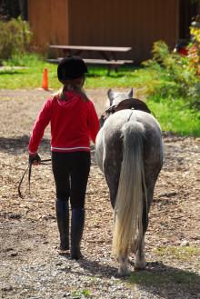 Hästsporten fostrar morgondagens kvinnliga ledare