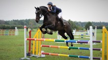 Distriktsveterinärerna inviger hästmottagning på Gotland
