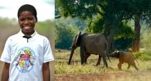 100 0000 barn i unikt projekt mot tjuvjakt och för flickors rättigheter