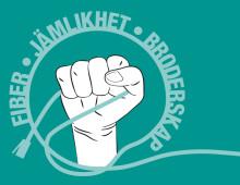 Blixtsnabbt bredband erbjuds villor i Helsingborg