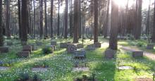 Sköter om världsarvet Skogskyrkogården