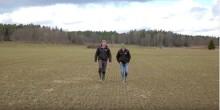 VIDEO - Växtreglering för mer rötter och bättre bestånd