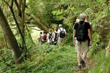 Månadens resa med Solresor: Vandringsresa till fyra öar på Azorerna