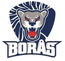 Nytt samarbetsavtal mellan Borås Hockey och OnePartnerGroup