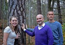 Viktig beståndsdel i trä kartlagd