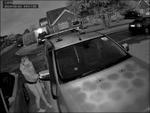 UPDATED - Police release CCTV images of Bognor theft suspect