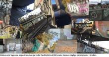 Klotteranmälningar ökar: M kräver att kommunala klotterväggar stoppas