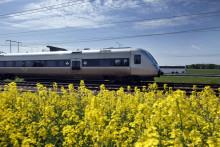 SJs tåg har god punktlighet