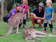 Familjen Hammarberg om Australiens djurliv