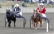 """Musse Hasselvall blir galoppryttare i """"Mitt liv som jockey"""""""