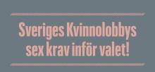 Partierna har glömt bort jämställdheten – här är Sveriges Kvinnolobbys krav inför valet